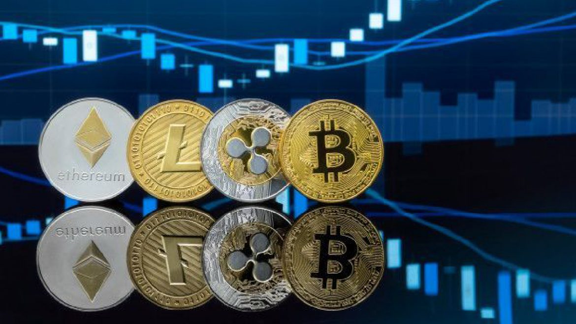 Should I Invest in Bitcoin or Altcoins?